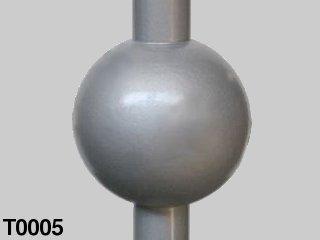 T0005